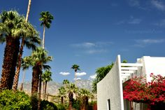 The Parker in Palm Springs. Live the decor here!