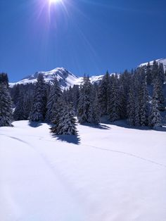 Avoriaz • Haute Savoie • Alpes du Nord #Avoriaz #LesPortesduSoleil #Ski #Hiver #Neige #Montagne #France #Statio ndeSki #HauteSavoie