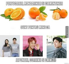 Portocale, mandarine și clementine Funny Images, Haha, Jokes, Humor, Comics, Meme, Random, Instagram, Humorous Pictures