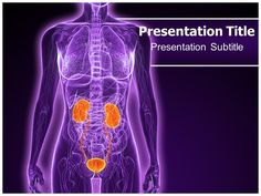 Download the Beautiful Design Specialists In Urology Powerpoint Template-