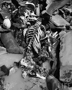isaiah 176 Skeleton of a Japanese atomic bomb victim, Nagasaki, Japan, by Bernard Hoffman,