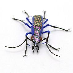 Wesley Fleming--Purple Spotted Jewel Tiger Beetle
