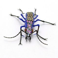 Wesley Fleming--Purple Spotted Jewel Tiger Beetle