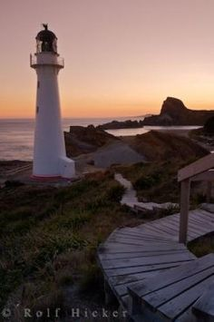 Photo of the Castlepoint Lighthouse<br />facing the Pacific Ocean in the Wairarapa Honeymoon In New Zealand, Lighthouse Pictures, New Zealand North, Honeymoon Destinations, Pacific Ocean, Beach Photos, Seashells, Lighthouses, Lotr