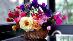 Garden full hd, hdtv, fhd, wallpapers hd, desktop backgrounds images and pictures Vides, 1080p Wallpaper, Wallpapers, Different Flowers, Flower Basket, All The Colors, Floral Arrangements, Floral Wreath, Make It Yourself