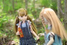 ぷちサンプルとmomokoをディスプレイした写真を中心に紹介するブログです