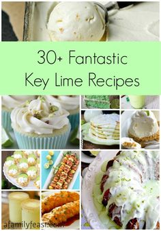 30+ Fantastic Key Lime Recipes | www.afamilyfeast.com #lime #keylime  A collection of sweet, savory and beverage recipes all using key limes!