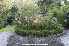 Trädgårdsflow: Evergreen hedges: sorrows, tests and joys