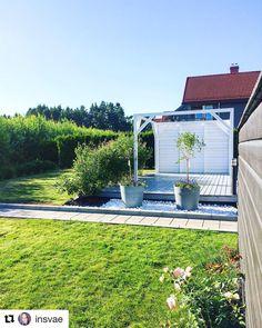 Pergola, Gardening, Garten, Lawn And Garden, Arbors, Horticulture