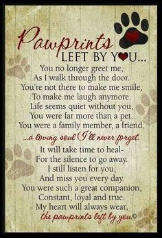 Can't imagine life without my sidekick, my best friend. Forever loyal. My lifelong companion, left paw prints in my heart.