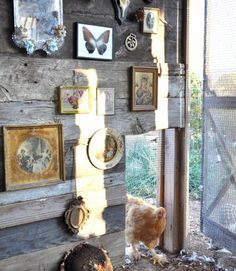 Why shouldn't a chicken coop get some interior design love, too? This one has its very own gallery wall, filled with vintage finds. (It looks stunning on the outside, too!)   - CountryLiving.com