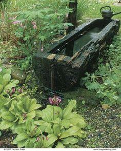 It's Primrose Time | Fine Gardening
