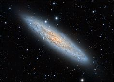 The Sculptor Galaxy NGC 253. (Image Credit & Copyright: Angus Lau) It was discovered by Caroline Herschel in 1783. Although it looked like a fuzzy object to Caroline, it's a nearly edge-on spiral galaxy. Since it has a high rate of new star formation, it's also known as a starburst galaxy.
