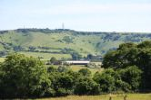 The rolling hills of the Sussex South Downs English Summer, Horses, Horse
