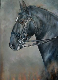 Lusitano: Etalon  Carolle Beaudry Art Equin, Canada