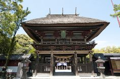 A brand new guide for your next unforgettable trip to Japan!