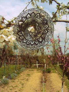 """some"" cosmic love in my mother's garden :)"