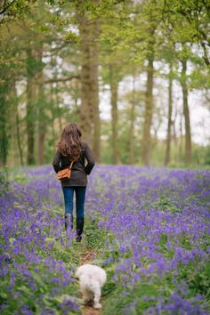 Bluebell Woods, Norfolk – The Londoner