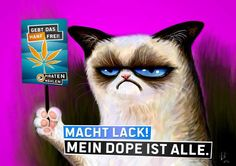 """großartig: echtes Piraten Partei Wahlplakat (official poster of german pirate party for upcoming elections: """"Liberalise Cannabis"""" -- """"Move it! I've run out of dope"""")"""