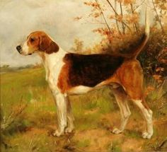 'The Oakley Dandy' Thomas Binks (1860 - 1912)