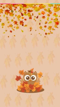 cute fall wallpaper shared by Stardust on We Heart It Image discovered by Stardust. Find images and videos about autumn, fall and Halloween on We Heart It - the app to get lost in what you love. Cute Fall Wallpaper, Owl Wallpaper, Holiday Wallpaper, Cute Wallpaper For Phone, Halloween Wallpaper, Cellphone Wallpaper, Wallpaper Downloads, Wallpaper Backgrounds, Fall Wallpaper Tumblr