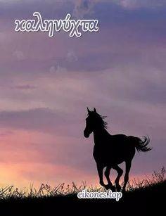 Όμορφο βράδυ με όμορφες εικόνες Τοπ - eikones top Good Night, Good Morning, Moose Art, Canvas, Movie Posters, Painting, Animals, Nighty Night, Buen Dia