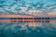 Jeste li spremni za romantični safari na kamilama?