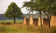 FarmCamps 't Looveld in Zweelo The Netherlands. Come and enjoy a farmstay in one of our luxurious safaritents and discover the Dutch country farm lifestyle with the whole family! For more information contact us at: info@farmcamps.nl or go to farmcamps.nl