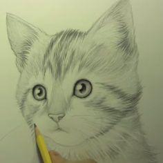 Afbeeldingsresultaat voor mooie tekeningen om na te tekenen voor beginners