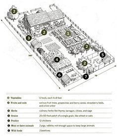 Nieman Markets: Our inspiration for 1/4 acre farm
