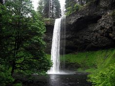 Silver Falls State Park, Silverton Oregon.  So close to my home - a piece of heaven.