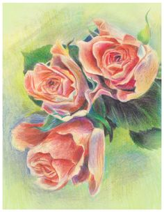 pink roses by ~ledaryuga on deviantART