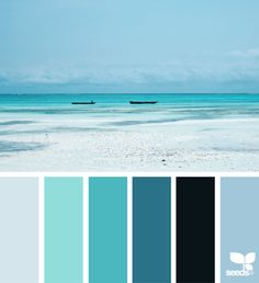 Trendy kitchen colors for walls colour palettes design seeds Ideas, Room Colors, Wall Colors, House Colors, Colours, Sea Colour, Beach Color, Colour Pallette, Colour Schemes, Ocean Color Palette