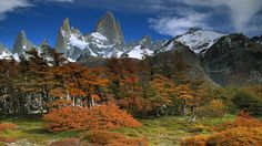 Monte Fitz Roy is located in Patagonia, between Chile and Argentina, nr. Description from pinterest.com. I searched for this on bing.com/images