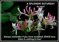 Nothing To Fear, Always Remember, Happy Saturday, Jesus Loves, Blessings, Good Morning, Blessed, Buen Dia, Bonjour