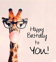 Giraffe Happy Birthday To You! birthday happy birthday happy birthday wishes birthday quotes happy birthday quotes happy birthday pics birthday images happy birthday to you birthday image quotes happy birthday image Happy Birthday Wishes For A Friend, Birthday Wishes Funny, Birthday Posts, Happy Birthday Pictures, Happy Birthday Funny, Happy Birthday Messages, Happy Birthday Quotes, Happy Birthday Greetings, Birthday Memes