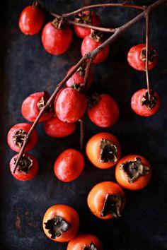 Japanese persimmon, Kaki 柿 #AmericanApparel #PinATripWithAA