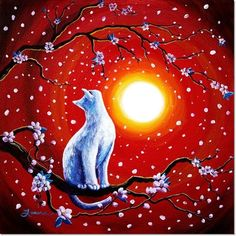 White Cat In Bright Sunset by Laura Iverson
