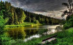 Image result for forest river