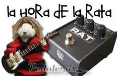 Pro Co Rat MEMEs – Pedaleras  www.pedaleras.com