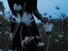 Find images and videos about grunge, nature and flowers on We Heart It - the app to get lost in what you love. Fantasy Book Series, Fantasy Books, Deep Books, Grunge, Lets Run Away, Dont Touch Me, Three Rivers, Another World, Tumblr Girls