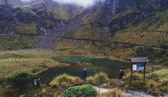 Frailejones Forest in the Ecuadorian Paramo looks this dreamlike indeed. Take a trip here! #Ecuador #travel #travelwithnaturegalapagos  . . . . #nature #greenbeauty #lagoons #highlands #paramoforest #intothewild - http://ift.tt/1HQJd81