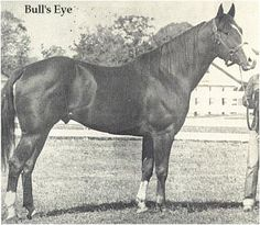Bulls Eye 1944 Sorrel Stallion by Joe Reed II x Nevermiss