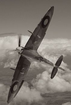 The Firedoves that Amity flies in Broken Sky are Spitfires in disguise. Amazing, iconic airplanes.