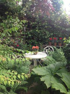 secret garden..