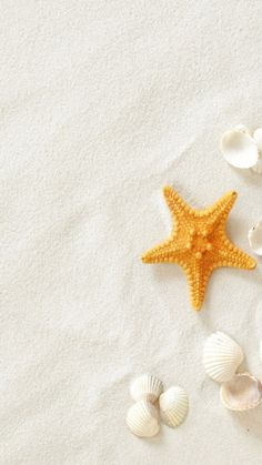 Pure Seaside Beach Starfish Seashell #iPhone #6 #plus #wallpaper