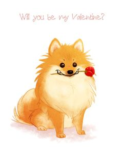 Valentine, Birthday, Greeting Card, Pomeranian with Rose