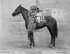 Cavalcade- 1934 Winner of the Kentucky Derby