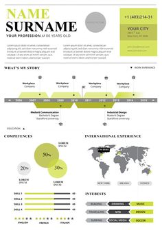 sample infographic resume from visme template infographic visual