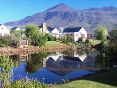 Janet-Lynn Vorster, resident of Greyton, Cape Province, South Africa, tells Globerovers Magazine about life in this quaint village. South African Homes, Game Reserve, Small Towns, Places Ive Been, Cape, Scenery, Wildlife, The Incredibles, Mansions